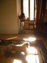 Olivia al sole dello zendo
